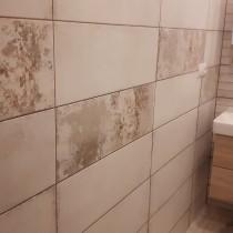 Rekonstrukce koupelny Pardubice, Palackého 1